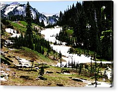 Summer Snow Acrylic Print