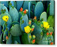 Acrylic Print featuring the photograph Summer Solstice  by Kathy Bassett