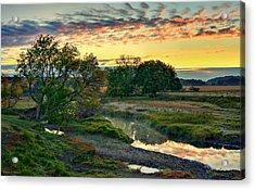Summer Stream Sunrise Acrylic Print
