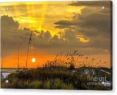 Summer Sun Acrylic Print by Marvin Spates