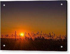 Summer Sunrise On The Plains Acrylic Print