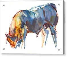 Summer Sunset Acrylic Print by Mark Adlington