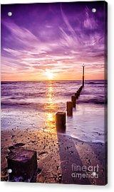 Summer Sunset Acrylic Print by Darren Wilkes