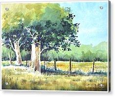 Summer Trees Acrylic Print by Rick Mock