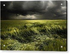 Summer Weather Acrylic Print
