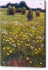 Summer Wildflowers Acrylic Print by Joan Swanson