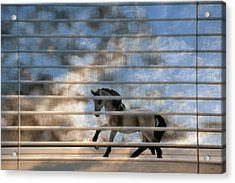 Summer Window 2 Acrylic Print