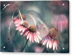 Summer Wonderland Acrylic Print