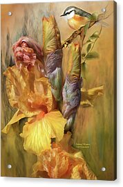 Summer Wonders Acrylic Print by Carol Cavalaris