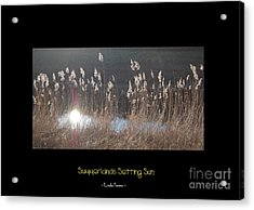 Summerlands Setting Sun Acrylic Print by Linda Prewer