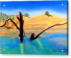Summer's End    Pastel Acrylic Print by Antonia Citrino