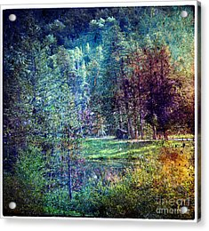 Summertime In Vail Acrylic Print
