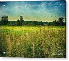 Summertime Acrylic Print by Jutta Maria Pusl