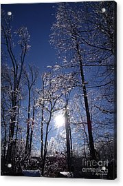 Acrylic Print featuring the photograph Sun And Ice by Lyric Lucas