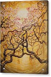 Sun And Sakura Acrylic Print by Vrindavan Das