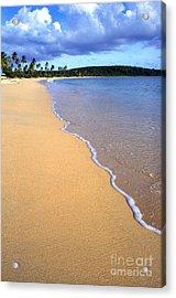 Sun Bay Acrylic Print by Thomas R Fletcher