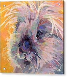 Sun Bun Acrylic Print by Kimberly Santini