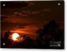 Sun Cradle... Acrylic Print by Dan Hefle