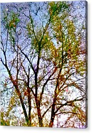 Acrylic Print featuring the digital art Sun Dappled by Dale   Ford