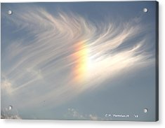 Sun Dog Acrylic Print by Carolyn Postelwait