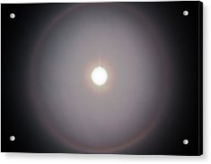 Acrylic Print featuring the photograph Sun Dog by Joel Loftus
