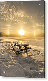 Sun Dog Acrylic Print by Rose-Maries Pictures
