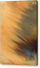 Sun Flare Acrylic Print