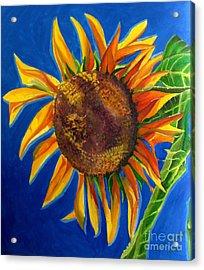 Sun Flower Acrylic Print by Grace Liberator