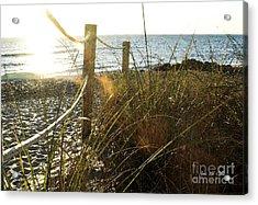 Sun Glared Grassy Beach Posts Acrylic Print