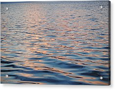 Acrylic Print featuring the photograph Sun Glow by Michele Kaiser