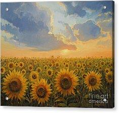 Sun Harmony Acrylic Print