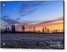 Sun Is Rising And Painting  Acrylic Print by Mario Mesi