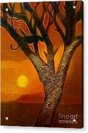 Sun Of Africa Acrylic Print by Lutz Baar
