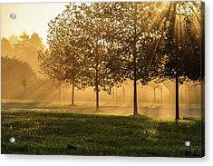Sun Ray Acrylic Print