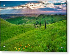 Sun Rays And Green Hillside Acrylic Print by Marc Crumpler