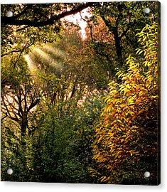 Sun Rays Acrylic Print