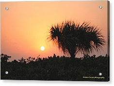 Sun Rise And Palm Tree Acrylic Print