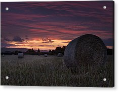 Acrylic Print featuring the photograph Sunrise Over The Harvest by Stewart Scott