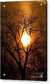 Sun Rise Sun Pillar Silhouette Acrylic Print