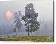 Sun Rise Acrylic Print