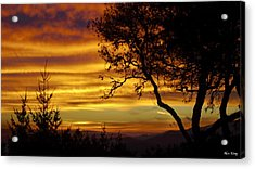 Sun Rising  Acrylic Print