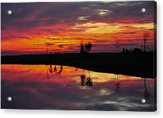 Acrylic Print featuring the photograph Sun Set At Cowen Creek by John Johnson