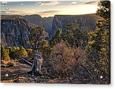 Sun Setting At Painted Wall Acrylic Print by Eric Rundle