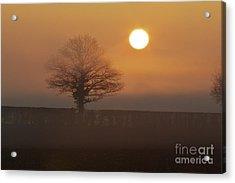 Acrylic Print featuring the photograph Sun Up by Gary Bridger