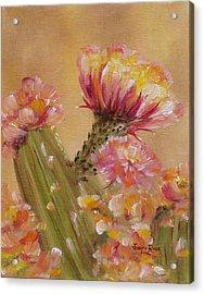 Sun Worshipper Acrylic Print by Judith Rhue