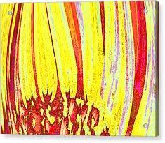 Sun Worshipper Acrylic Print by Wendy J St Christopher
