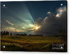 Acrylic Print featuring the photograph Sunbeam by Rose-Maries Pictures