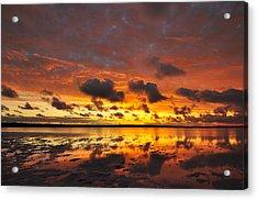 Sunburnt Sky Acrylic Print by Sally Nevin