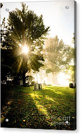 Sunburst Over Cemetery Acrylic Print by Amy Cicconi
