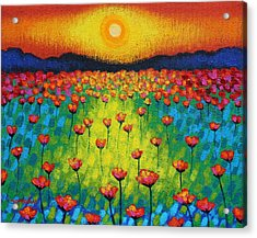 Sunburst Poppies Acrylic Print